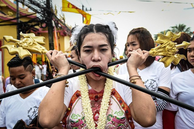 A devotee of the Nine Emperor Gods marches with large poles pierced through her cheeks during the annual Phuket Vegetarian Festival in the southern province of Phuket on October 1, 2016. Swords, axe handles, kebab skewers and even a model boat were just some of the objects placed in devotees pierced cheeks as southern Thailand's gruesome vegetarian festival got under way. (Photo by Lillian Suwanrumpha/AFP Photo)