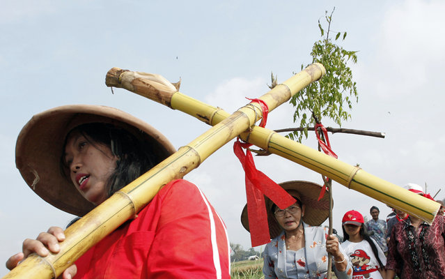 An Indonesian Christian devotees carries a bamboo cross as he walks with others during a Good Friday procession to reenact Jesus path to crucification in Klaten, Central Java, Indonesia, Friday, March 29, 2013. Christians all over the worls are marking Good Friday, the day when Christ was crucified. (Photo by A.K. Hendratmo/AP Photo)