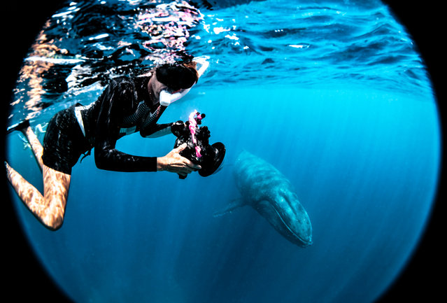 """I think especially with me being from inland Germany (where it's) landlocked, I'm even more stoked (to be doing this). I think I'm in love with whales. Haha"". (Photo by Rita Kluge/The Guardian)"