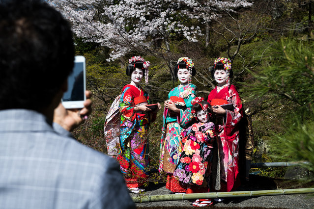 A family wearing traditional Japanese clothing posed for a photograph during spring season in one of the garden in Kiyomizu dera, Kyoto prefecture, Japan on March 30, 2018. (Photo by Richard Atrero de Guzman/NurPhoto via Getty Images)