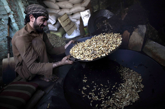 A Pakistani vendor prepares peanuts for sale on a roadside in Peshawar, Pakistan, January 7, 2015. Most of the items are imported from Afghanistan. After a good rain season the sales of dry fruits flourish. Tourists from all over Pakistan come to Peshawar to purchase dry fruits along with other items because of price differences between different parts of the country. (Photo by Bilawal Arbab/EPA)