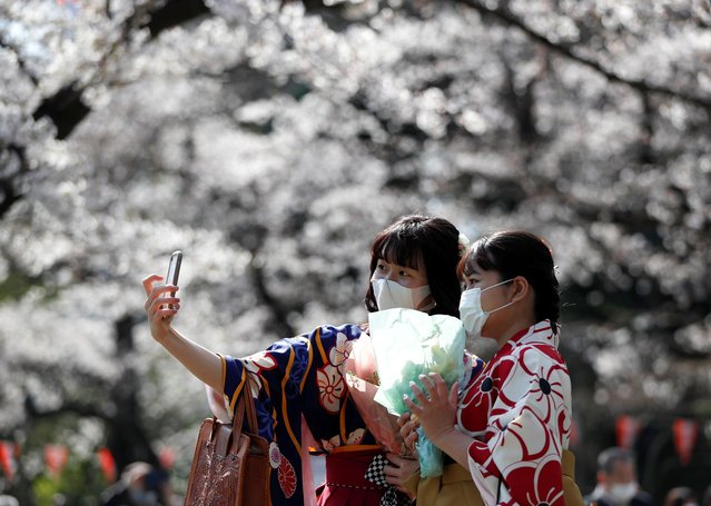 Kimono-clad women wearing protective face masks take selfie photos among blooming cherry blossoms amid the coronavirus disease (COVID-19) panemic, at Ueno Park in Tokyo, Japan, March 23, 2021. (Photo by Issei Kato/Reuters)