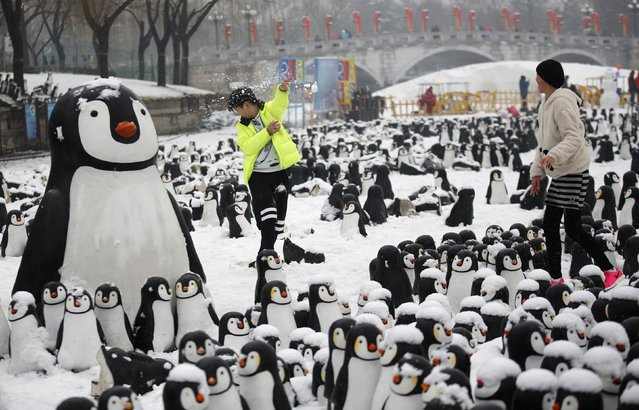 Visitors have a snowball fight at an installation of penguin sculptures on the second day of the Chinese Lunar New Year during the temple fair in celebration of Chinese New Year, at a park in Beijing, February 20, 2015. (Photo by Kim Kyung-Hoon/Reuters)
