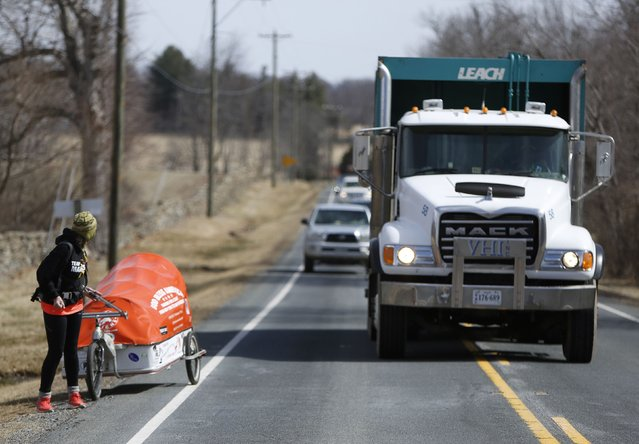 "Sixty-eight year old cross-country runner Rosie Swale-Pope is passed by traffic on Route US 50 while pulling her cart, ""The Icebird"", in Upperville, Virginia March 13, 2015. (Photo by Gary Cameron/Reuters)"