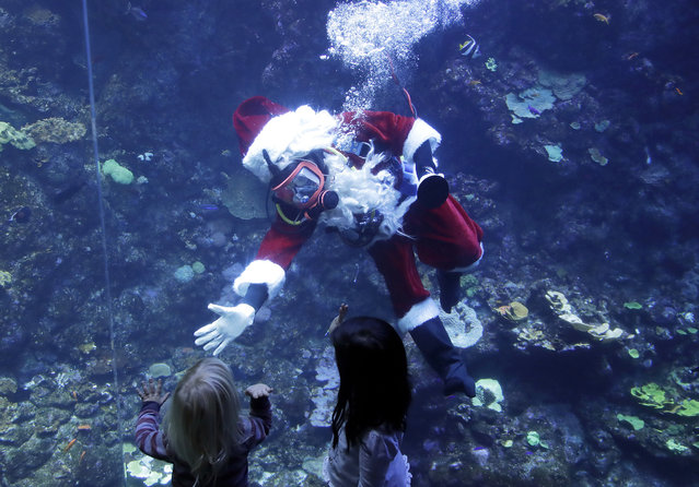 Volunteer diver George Bell, dressed as Santa Claus, waves to children after speaking inside the Philippine Coral Reef tank at The California Academy of Sciences in San Francisco, Thursday, December 13, 2018. The California Academy of Sciences launched its holiday festivities Thursday by having a diver dressed as Santa Claus submerge into a coral reef exhibit while dozens of children watched from behind the glass. (Photo by Jeff Chiu/AP Photo)