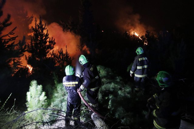 Chilean firefighters try to extinguish a forest fire in Cauquenes, some of 357 km South of Santiago de Chile, Chile, 19 January 2017. Chile is fighting 91 fires with 24,497 hectares burnt according to the National Forest Corporation. (Photo by Benjamin Hernandez/EPA)