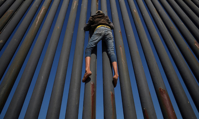 A migrant, part of a caravan of thousands from Central America, climbs the border fence between Mexico and the US in Tijuana on 18 November 2018. (Photo by Hannah McKay/Reuters)