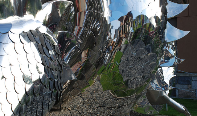 Stainless Steel Sculptures By Kevin Stone