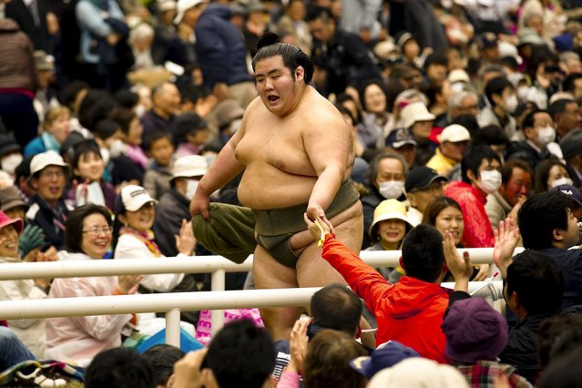 "A sumo wrestler greets supporters after a bout at the ""Honozumo"" ceremonial sumo tournament at the Yasukuni Shrine in Tokyo April 3, 2015. (Photo by Thomas Peter/Reuters)"