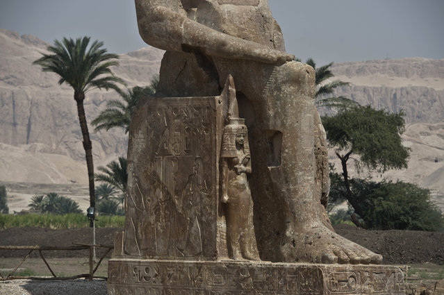 A picture taken on March 23, 2014 shows a part of a newly displayed statue of pharaoh Amenhotep III and his wife Tiye (Down) in Egypt's temple city of Luxor on March 23, 2014. (Photo by Khaled Desouki/AFP Photo)