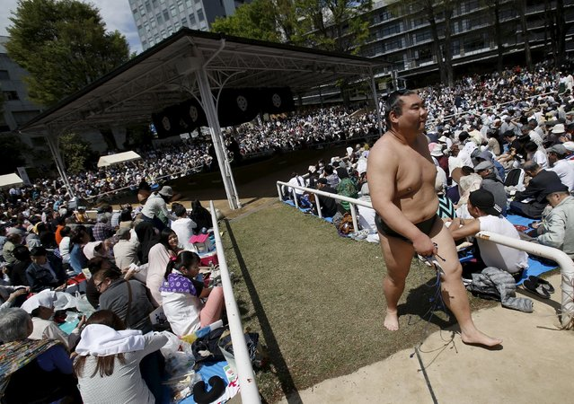 """A sumo wrestler leaves the ring during the annual """"Honozumo"""" ceremonial sumo tournament dedicated to the Yasukuni Shrine in Tokyo, Japan, April 18, 2016. (Photo by Yuya Shino/Reuters)"""