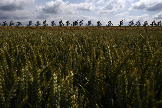 Cyclists ride in the countryside with wheat fields in foreground during the third stage of the 106th edition of the Tour de France cycling race between Binche and Epernay, Belgium, on July 8, 2019. (Photo by Jeff Pachoud/AFP Photo)
