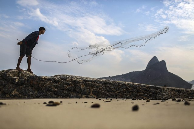 A fisherman throws out his net at Ipanema beach in Rio de Janeiro, Brazil, 07 May 2016. (Photo by Antonio Lacerda/EPA)