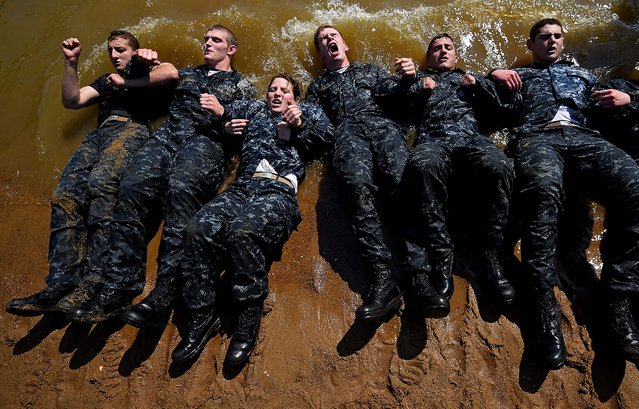 Members of the United States Naval Academy freshman class do sit-ups at the wet and sandy station during the annual Sea Trials training exercise at the U.S. Naval Academy on May 13, 2014 in Annapolis, Maryland. (Photo by Patrick Smith/Getty Images)