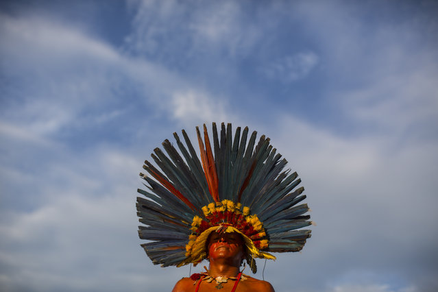 A Bororo Indian poses for a photo during the Indigenous Games in Cuiaba, Brazil, Friday, November 15, 2013. (Photo by Felipe Dana/AP Photo)