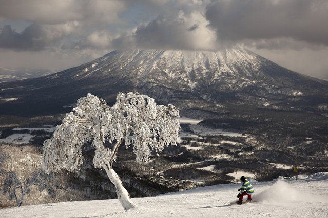 "A man snowboards down a slope overlooking Mount Yotei at a ski resort February 5, 2020, in Niseko, Hokkaido, Japan. ""There's a lot less snow"", said Nguyen Nguyen, a skier visiting from Hong Kong. ""This is definitely the worst I've ever seen it"". (Photo by Jae C. Hong/AP Photo)"