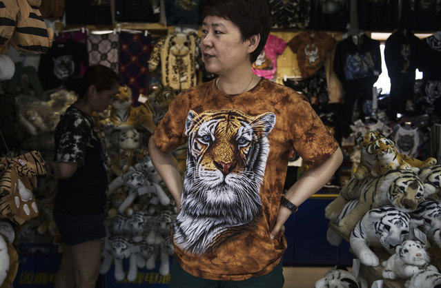 A vendor waits to sell merchandise at the Heilongjiang Siberian Tiger Park on July 5, 2017 in Harbin, northern China. (Photo by Kevin Frayer/Getty Images)