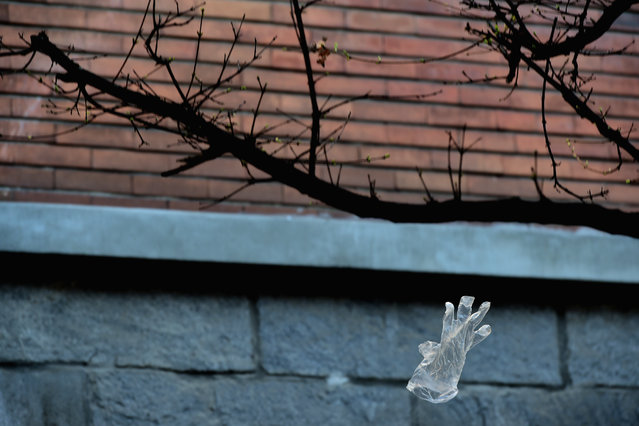 A protective glove pushed by the wind into the air during the coronavirus outbreak on March 18, 2020 in Milan, Italy. Italian Government continues to enforce the nationwide lockdown as measures to control the coronavirus spread. (Photo by Pier Marco Tacca/Anadolu Agency via Getty Images)
