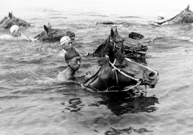 Prince Mikasa, in foreground wearing black skull cap, youngest of the three brothers of Emperor Hirohito, participates in the exercises of the 15th Cavalry Regiment, swimming mounts across the river in Tokyo, September 3, 1936. Prince Mikasa, a graduate of the army cadet school, is expected to be commissioned a cavalry officer soon. (Photo by AP Photo)