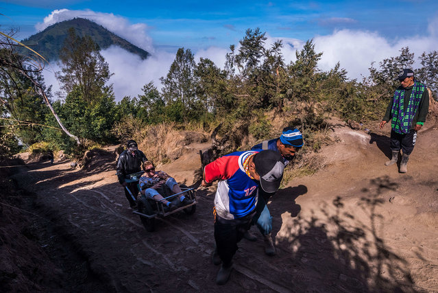 Miners pulling up lazy tourists to the rim of Kawah Ijen (Ijen Volcano), East Java, Indonesia on September 21, 2017. They will earn as much as they would bring down a load of sulfur. Nomadic Explorer, Cultural Lifestyle Photographer Claudio Sieber captured striking images of miners working at Ijen volcanic range in East Java, Indonesia. The sulphur miners risk their lives daily as they climb the active volcano carrying heavy loads, which they sell to sugar refineries. Shortly after midnight curious tourists are flocking in hundreds through the gate of Ijen's foothills to be right on time, driven by the images others took before them. Kawah Ijen is the one of the world's largest acidic volcanic crater lake; famous for its turquoise color as well as the unreal atmosphere it offers during darkness. A dusty path zigzags 3 kilometers up to the crater rim. This doesn't mean anything challenging; in particular, special sights have to be deserved anyway. The irritating smell of sulfur announces the near of the crater's existence. Arriving on the crater's rim the reward for the torture becomes visible. Blue fire darts its tongues through the fumes of sulfur dioxide. Somehow, the spectacle isn't as romantic as expected, since it is also the rough working space of approx. 150 sulfur miners who start their shift at 1 am. Lately, harvesting the abundance of devil's gold received international attention. This did obviously not really improve a miner's lifestyle; neither did it contribute to a better wage. (Photo by Claudio Sieber/Barcroft Images)