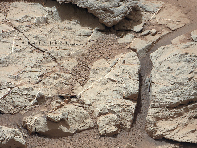"This image of an outcrop at the ""Sheepbed"" locality, taken by NASA's Curiosity Mars rover with its right MastCam on December 13, show well-defined veins filled with whitish minerals, interpreted as calcium sulfate. These veins form when water circulates through fractures, depositing minerals along the sides of the fracture, to form a vein. This is Curiosity's first close look at minerals that formed within water that percolated within a subsurface environment. (Photo by NASA)"