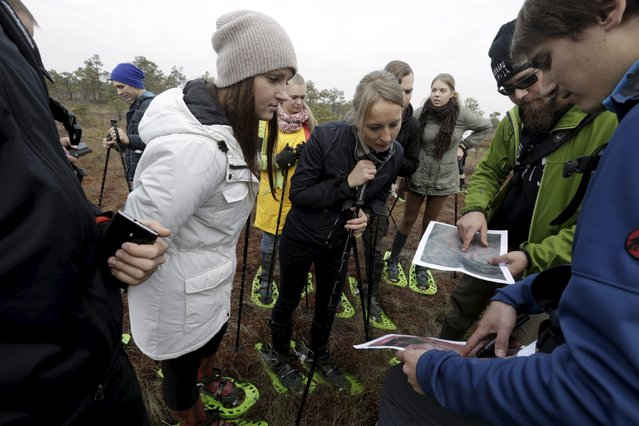 Guides Kristaps Kiziks (2nd R) and Kristaps Lamsters (R) talk to visitors during a tour of the Great Kemeri Bog, Latvia, October 17, 2015. (Photo by Ints Kalnins/Reuters)