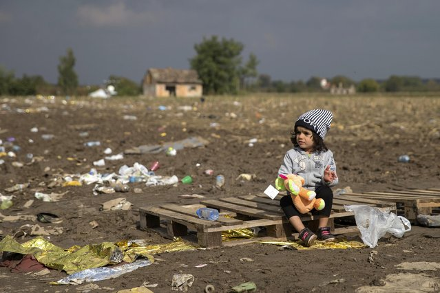 A child sits on a wooden pallet holding its soft toy as migrants wait to cross the border with Croatia near the village of Berkasovo, Serbia, October 21, 2015. About 3,500 migrants spent the night camped out in freezing cold at the Berkasovo-Bapska border crossing between Serbia and Croatia after the Croatian government closed the gates to limit the number of people entering the country. (Photo by Marko Djurica/Reuters)