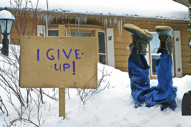A mannequin with boots is stuffed upside down in the snow in front of a  home in Nisswa, Minnesota, on March 18, 2013. (Photo by Steve Kohls/The Brainerd Daily Dispatch)