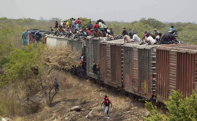 Migrants ride on top of a northern bound train toward the US-Mexico border in Union Hidalgo in Oaxaca, Monday, April 29, 2013. Migrants crossing Mexico to get to the U.S. have increasingly become targets of criminal gangs who kidnap them to obtain ransom money. (Photo by Eduardo Verdugo/AP Photo)
