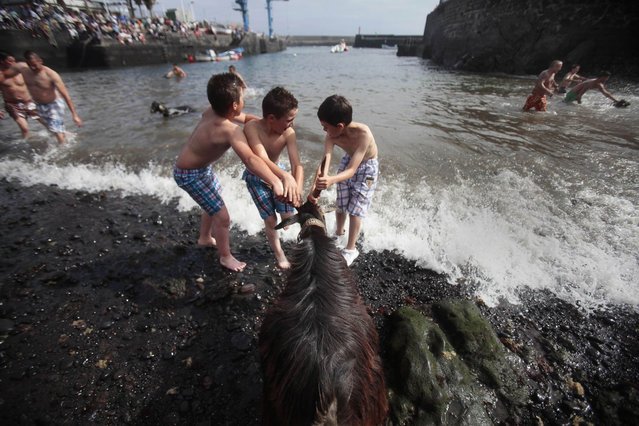 "Children try to pull a goat into the water during the ritual ""Bano de las Cabras"" (Bathing of the goats), as part of the traditional San Juan (Saint John) festival, on a beach of Puerto de la Cruz on the Spanish Canary island of Tenerife on June 24, 2013. (Photo by Desiree Martin/AFP Photo)"