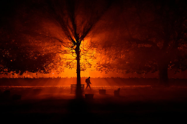 A man uses a torch to walk through a park during cold fog at night in Athboy, Ireland, October 31, 2018. (Photo by Clodagh Kilcoyne/Reuters)