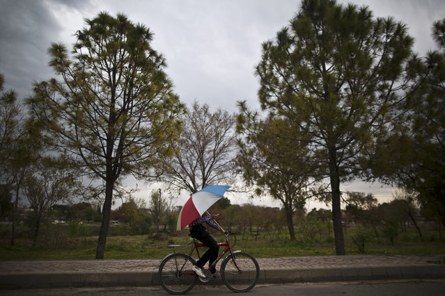 A Pakistani man riding a bicycle on a main road, holds an umbrella to shelter himself from rain, in Islamabad, Pakistan, Monday, March 17, 2014. (Photo by Muhammed Muheisen/AP Photo)