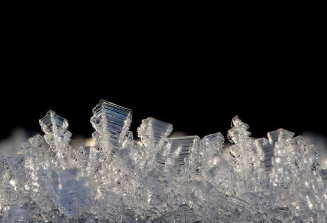 Ice forms on a fence post in Clapham Common on December 29, 2016 in London, England. Freezing temperatures have created a cold, foggy and frosty start for much of England and Wales for a second day. The MET office have issued a yellow weather warning for fog creating difficult driving conditions. (Photo by Dan Kitwood/Getty Images)