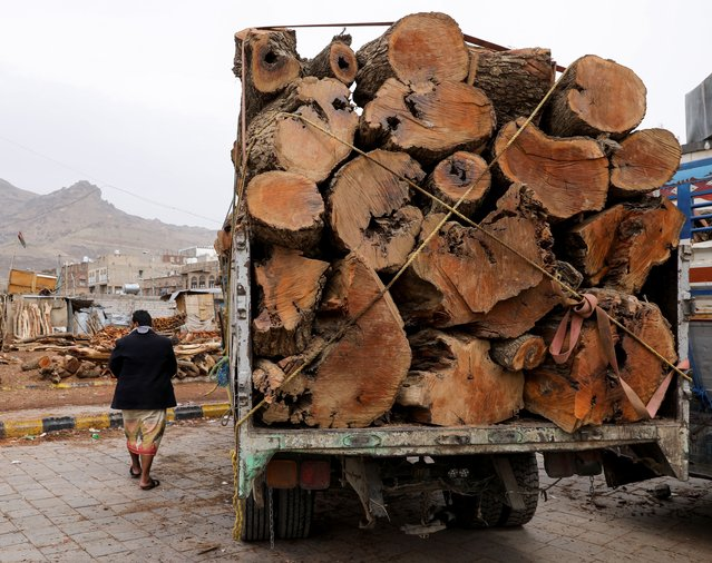 A man walks by a truck loaded with logs at a firewood market in Sanaa, Yemen, July 17, 2021. (Photo by Khaled Abdullah/Reuters)