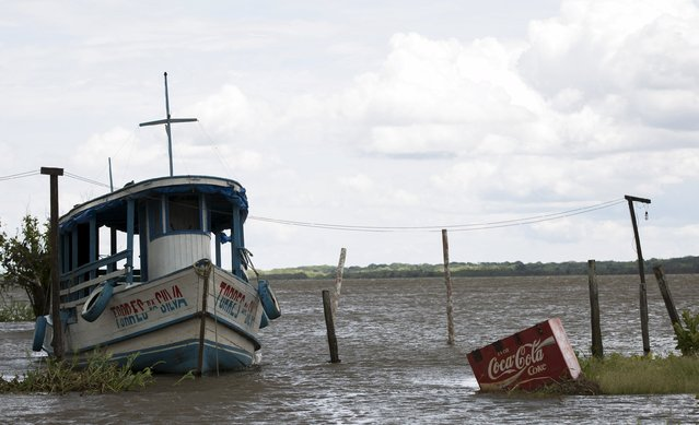 A freezer with a Cola Cola logo is pictured next to a boat by the banks of the Solimoes river that flooded the rural municipality of Manacapuru, in Amazonas state May 5, 2015. (Photo by Bruno Kelly/Reuters)