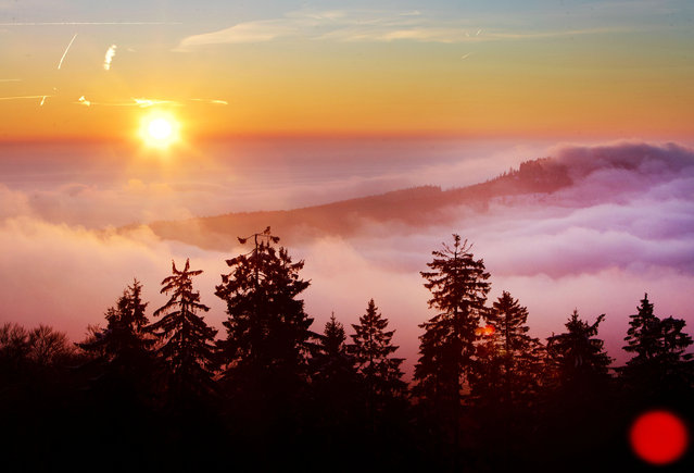 The sun rises at the horizon behind the hills of the Taunus mountains near Frankfurt, Germany, Tuesday, January 22, 2019. (Photo by Michael Probst/AP Photo)