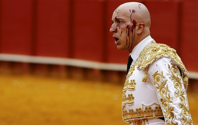 Spanish matador Javier Castano is seen with his face splattered by bull's blood after driving a sword to kill it during a bullfight at The Maestranza bullring in the Andalusian capital of Seville, southern Spain April 17, 2016. (Photo by Marcelo del Pozo/Reuters)