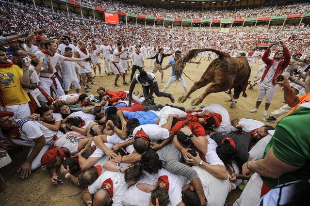 A cow jumps over a group of revelers on the bull ring,  at the San Fermin Festival, in Pamplona, Spain, Wednesday, July 8, 2015. Revelers from around the world arrive to Pamplona every year to take part in some of the eight days of the running of the bulls. (Photo by Alvaro Barrientos/AP Photo)
