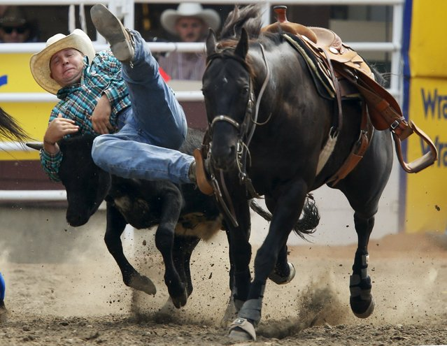 Clayton Moore of Pouce Coupe, B.C., tries to grab a steer but missed it in the Steer Wrestling event during the Calgary Stampede rodeo in Calgary, Alberta, July 11, 2015. (Photo by Todd Korol/Reuters)