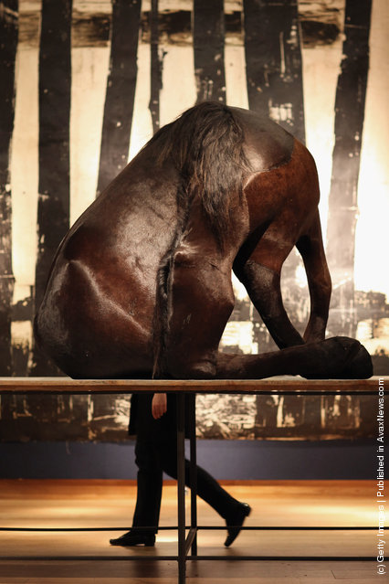 A Christie's auction house employee walks past a piece of work entitled 'The Black Horse' by Berlinde De Bruyckere