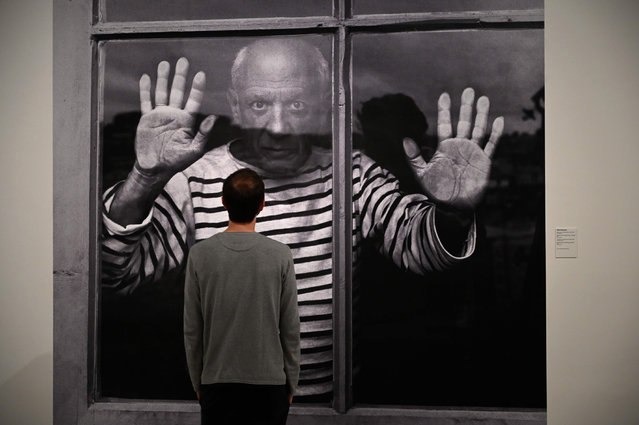 """A man looks at a photograph by French photographer Robert Doisneau entitled """"The Fate Line: Pablo Picasso at Vallauris, 1952"""" during the presentation of the photo-exhibition """"Picasso, photographer's gaze"""", on June 5, 2019 at the Picasso Museum in Barcelona. (Photo by Lluis Gene/AFP Photo)"""