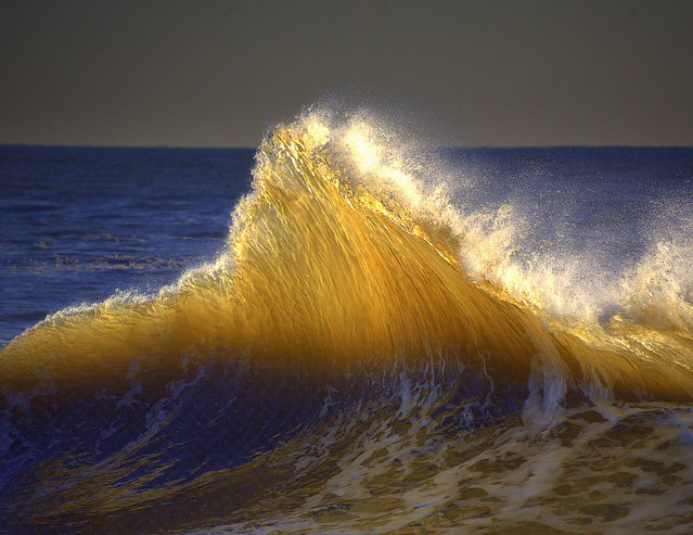 Golden Glass Wave