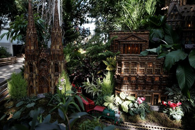 A model train travels past scaled models of the New York city landmarks built entirely with plant parts during a media preview of the Holiday Train Show at the New York Botanical Garden in the Bronx borough of New York City, U.S., November 14, 2016. (Photo by Mike Segar/Reuters)