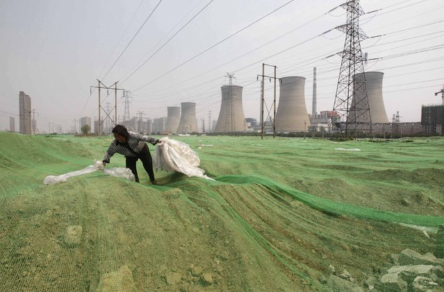 A labourer collects plastic bags on a dust screen covering construction waste near a power plant in Zhengzhou, Henan province in this July 15, 2014 file photo. China Power Investment Corp is merging with the State Nuclear Power Technology Corp, as Beijing drives consolidation in its rapidly expanding nuclear power sector with the aim of eventually exporting reactors. (Photo by Reuters/Stringer)