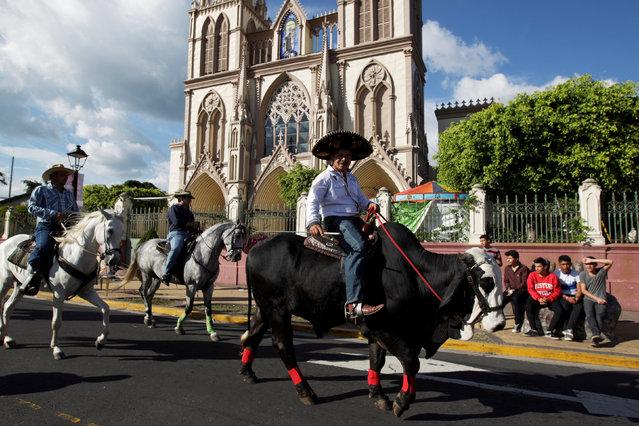 Jaime Leiva rides his bull Rambo prior to a bull riding event in Santa Tecla, El Salvador, December 15, 2016. (Photo by Jose Cabezas/Reuters)