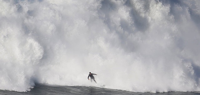 A surfer drops in on a large wave at Praia do Norte in Nazare, Portugal December 17, 2016. (Photo by Rafael Marchante/Reuters)