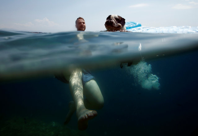 CROATIA: A man swims in the sea with his dog at dog beach and bar in Crikvenica, Croatia, July 12, 2016. The first Croatian beach bar specifically designed for dogs opens in the northern Adriatic town of Crikvenica, enabling canines and their owners to experience the joys of summertime together. Located at one of the few dog friendly beaches in the country, the bar's offer includes specially prepared ice cream, dog beer and snacks. (Photo by Antonio Bronic/Reuters)