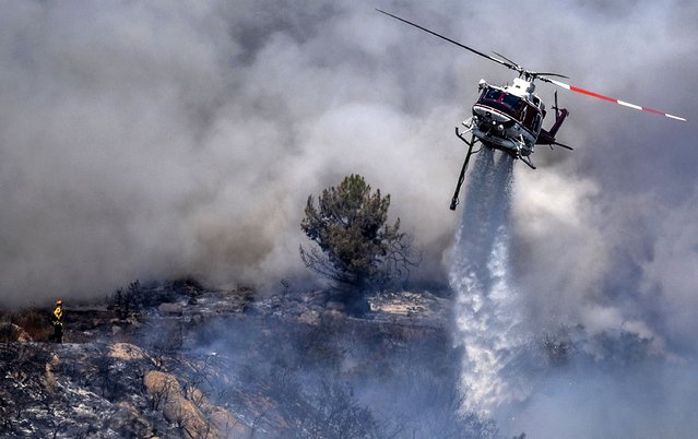 A firefighter is dwarfed by an aerial drop at the the Chaparral Fire in Murrieta which still blazes, Sunday, August 29, 2021. Several homes appear to be evacuated in the area. (Photo by Cindy Yamanaka/The Orange County Register via AP Photo)