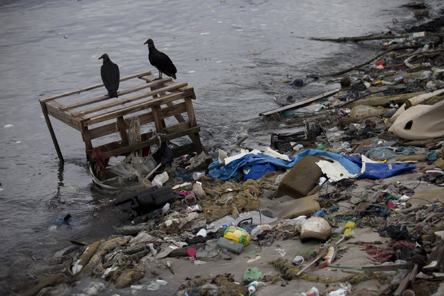 Vultures perch on trash strewn along the shore of Guanabara Bay in Rio de Janeiro, Brazil, Monday, June 1, 2015. With poor trash and sewage services, Rio's waterways are choked with raw sewage and garbage, which university art students used to create an exhibition to draw attention to the fetid state of the citys bay. (AP Photo/Silvia Izquierdo)