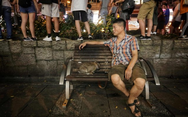 "A man sits on a park bench with his pet rabbit as protesters gather in the Tsim Sha Tsui district after taking part in a rally against a controversial extradition bill in Hong Kong on August 10, 2019. Police in Hong Kong fired tear gas on August 10 at pro-democracy protesters who defied orders to cancel a rally and blocked intersections across the city in ""hit-and-run"" demonstrations. (Photo by Vivek Prakash/AFP Photo)"